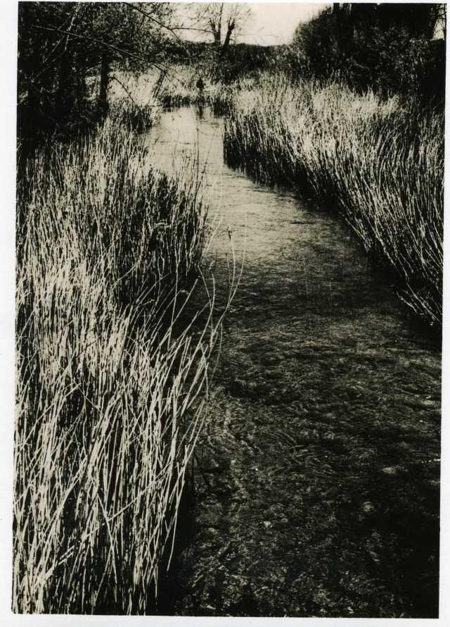 Rivière sur par papier Lumina Elysée B712